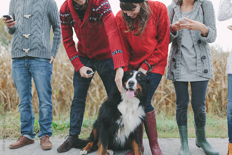 Large Group of Friends Portrait and Dog by HEX. for Stocksy United