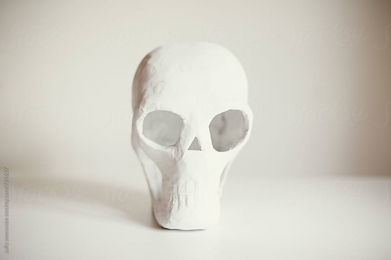 Skull by sally anscombe for Stocksy United