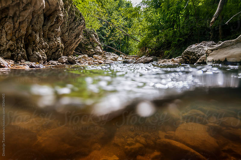Split view on the river in the canyon by Dimitrije Tanaskovic for Stocksy United