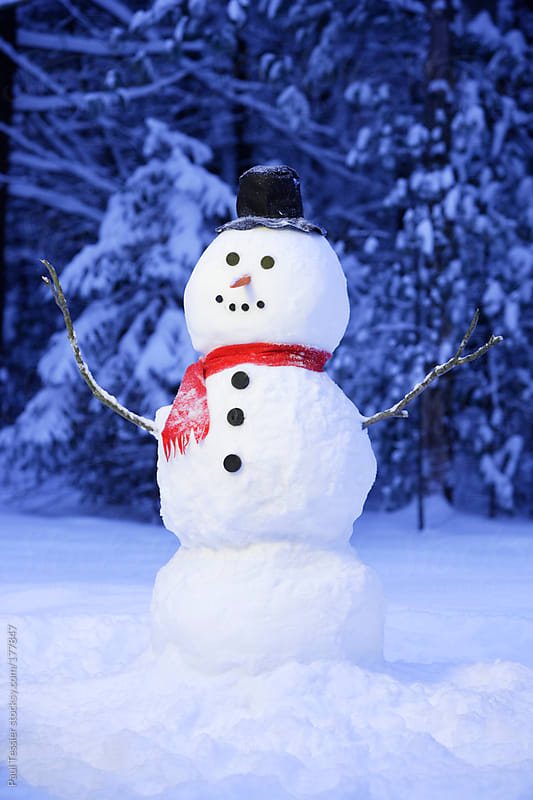 Snowman by Paul Tessier for Stocksy United
