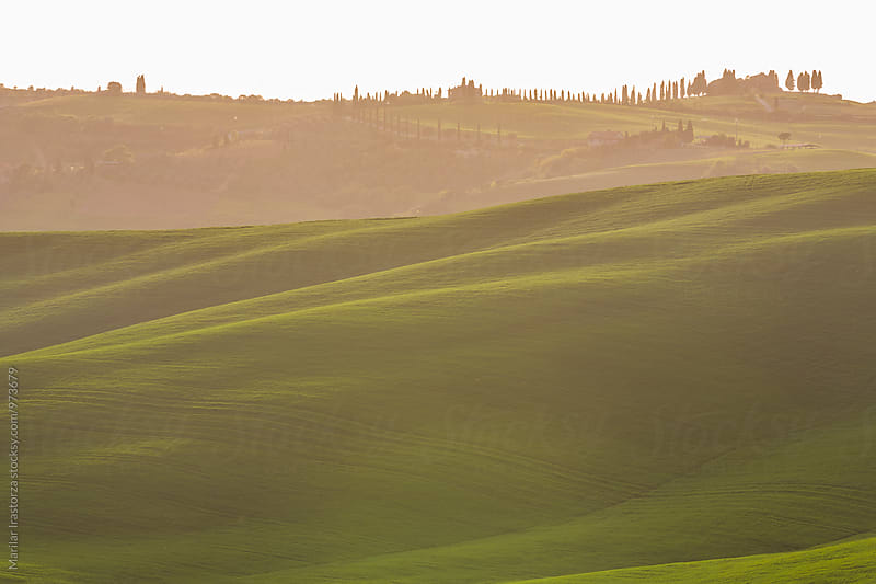 Tuscany fields at sunrise by Marilar Irastorza for Stocksy United