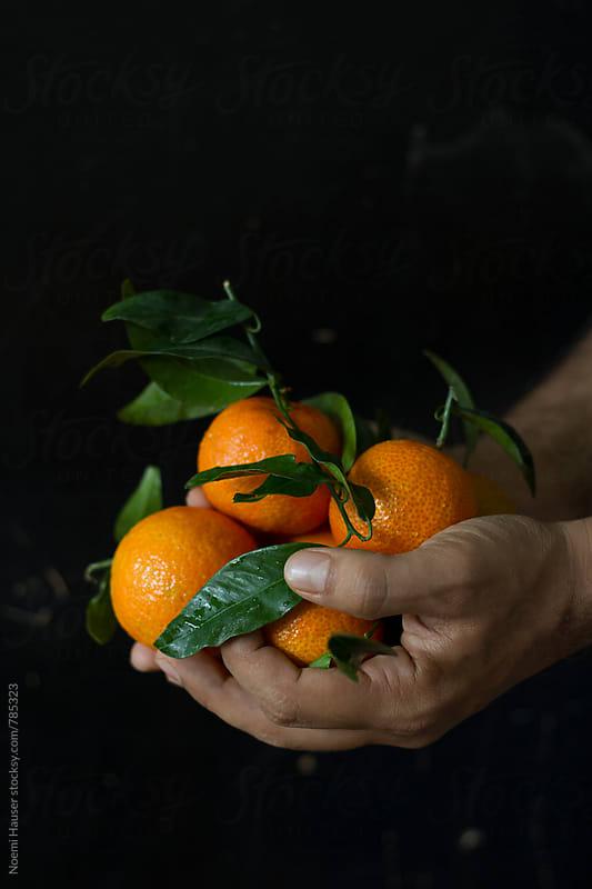 Mandarin orange by Noemi Hauser for Stocksy United