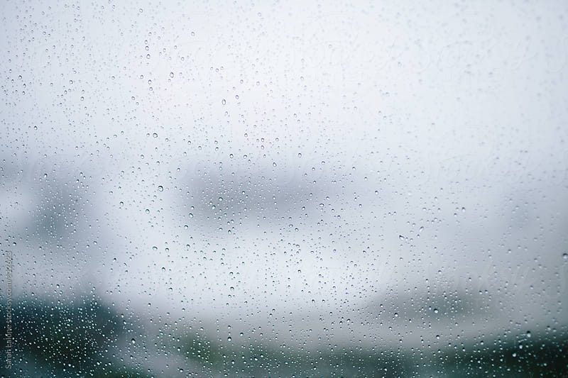small raindrops on a window looking outside by Sarah Lalone for Stocksy United