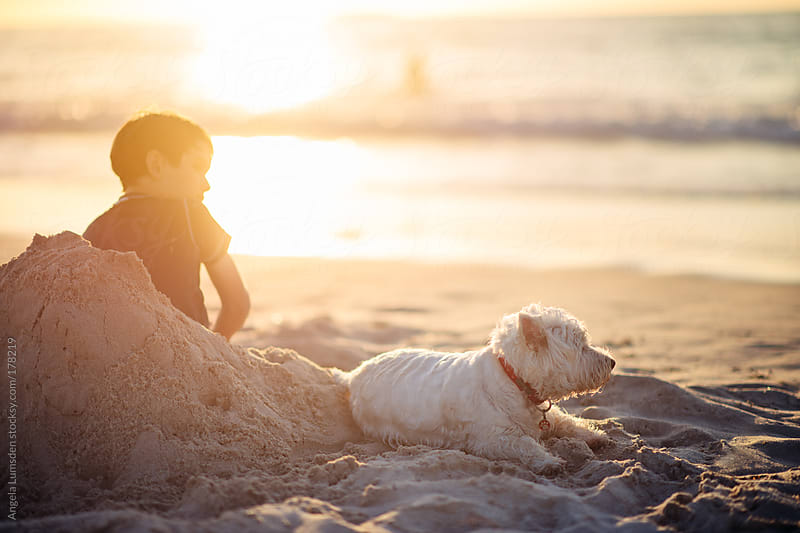 Boy sitting in a sand chair at the beach at sunset by Angela Lumsden for Stocksy United