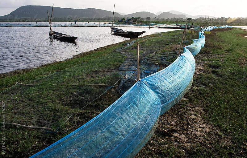 Chilika lake view with fishing net and boats by PARTHA PAL for Stocksy United