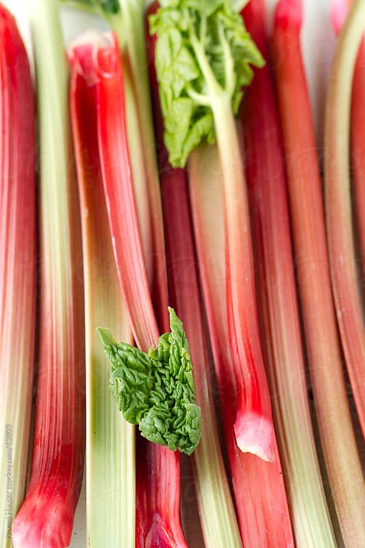 Rhubarb stalks by Noemi Hauser for Stocksy United