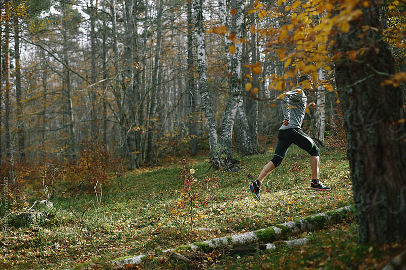Trail runner man training in the forest by Miquel Llonch for Stocksy United
