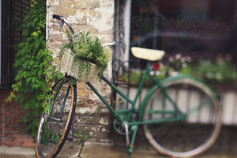 Vintage Bike With Plants by ALICIA BOCK for Stocksy United