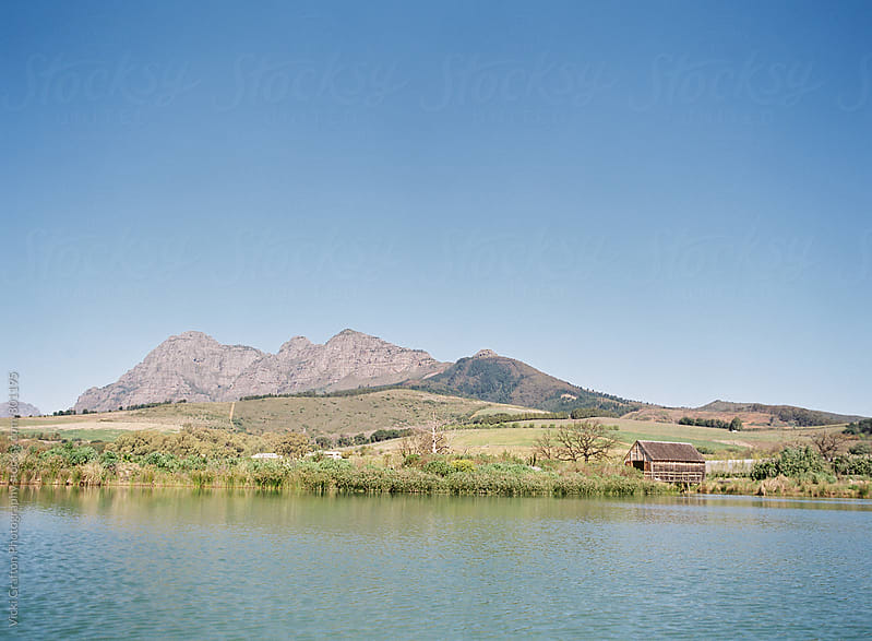 Stellenbosch South Africa  by Vicki Grafton Photography for Stocksy United