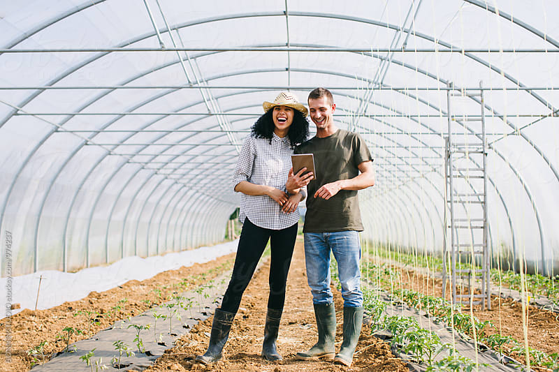 Farmers couple using a digital tablet in a big greenhouse. by BONNINSTUDIO for Stocksy United