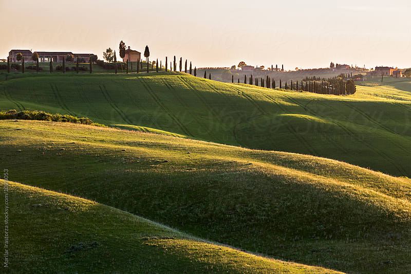 Houses and fields in Tuscany at sunset light by Marilar Irastorza for Stocksy United