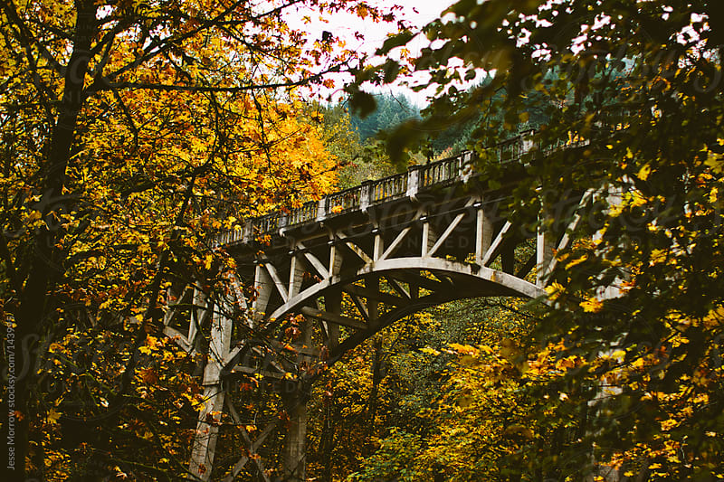 Fall time bridge in Portland, OR by Jesse Morrow for Stocksy United