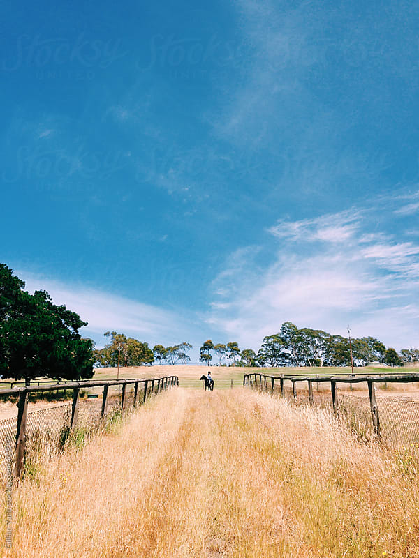 girl on horse in a country paddock by Gillian Vann for Stocksy United