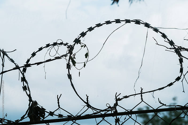 Barbed Wire by Rowena Naylor for Stocksy United