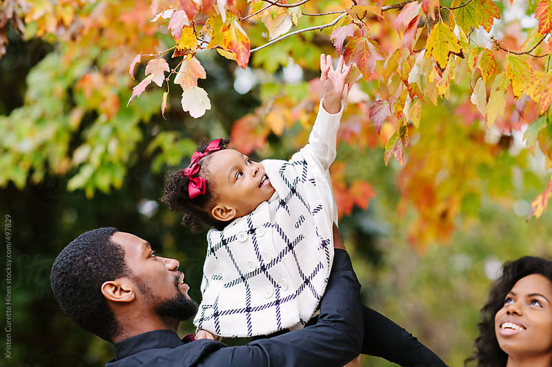 A young father holding his daughter up to an autumn tree by Kristen Curette Hines for Stocksy United