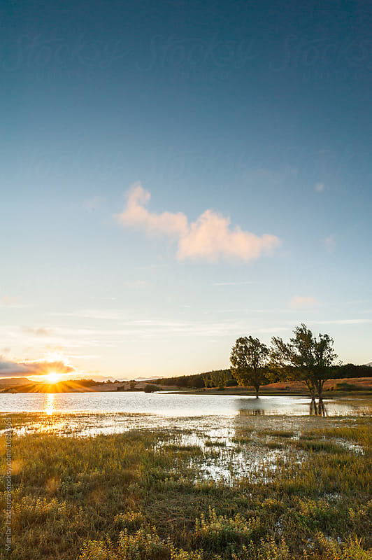 Wetland at sunset by Marilar Irastorza for Stocksy United