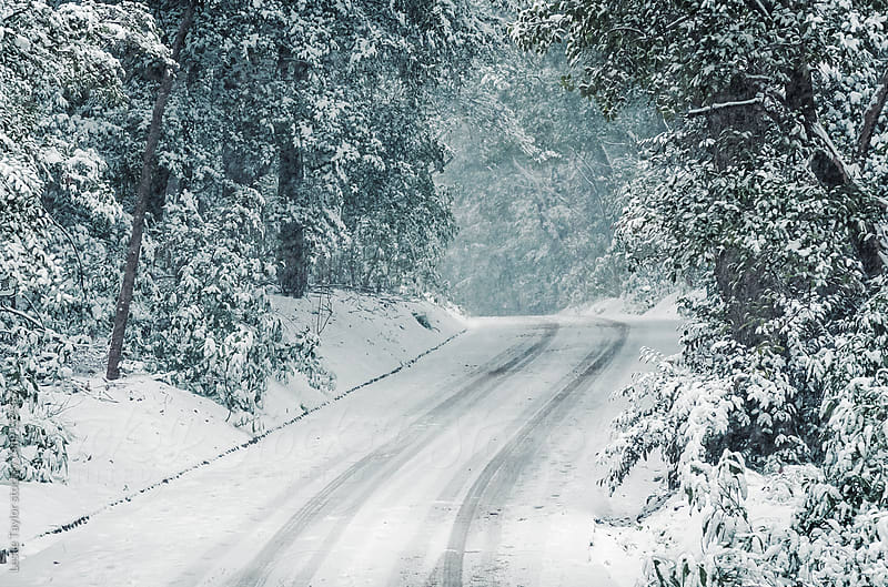 Road Through The Snowy Woods by Leslie Taylor for Stocksy United