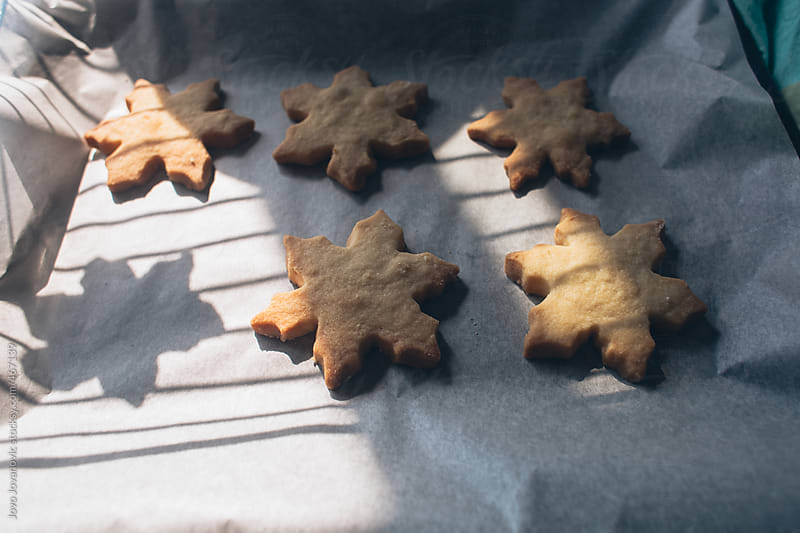 Delicious Homemade Christmas Cookies by Jovo Jovanovic for Stocksy United