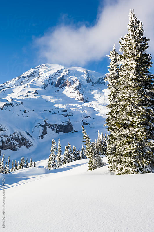 Winter in Mount Rainier National Park by Mark Windom for Stocksy United