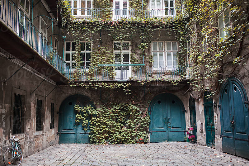 Old building covered in ivy by Jovana Rikalo for Stocksy United