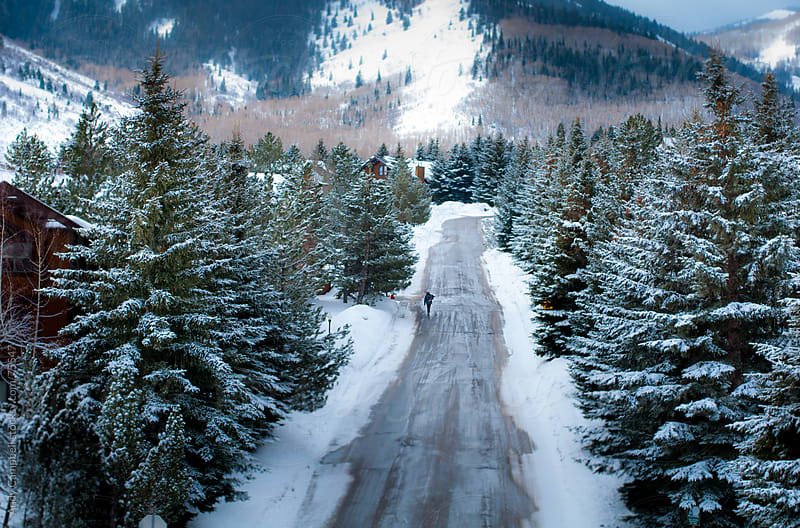 A man walks down a snowy, tree-lined road toward ski lodge accomodation by Andy Campbell for Stocksy United