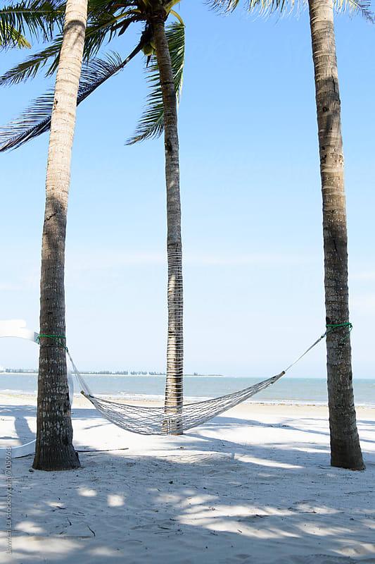 hammock under coconut trees on beach by Lawren Lu for Stocksy United