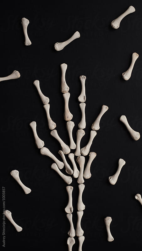 Skelet hand made from bones. by Marko Milanovic for Stocksy United