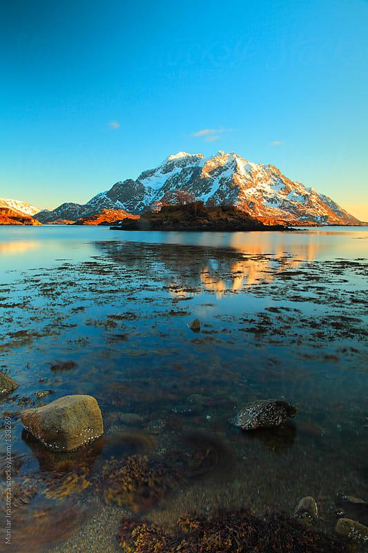 The Lake by Marilar Irastorza for Stocksy United