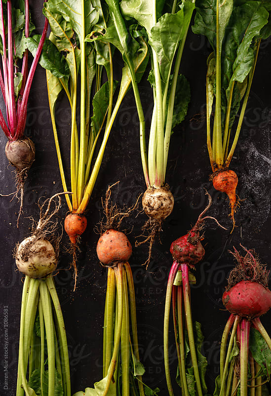 Various types of fresh beetroot on a dark background. by Darren Muir for Stocksy United