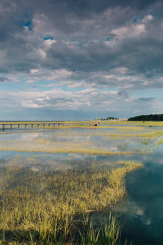 Marsh Landscape in Massachusetts by Raymond Forbes LLC for Stocksy United