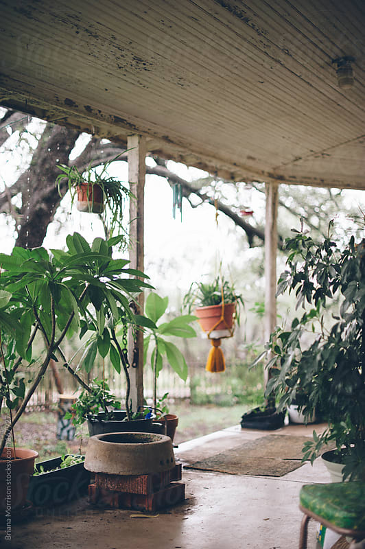Front Porch of a Home with Plants by Briana Morrison for Stocksy United