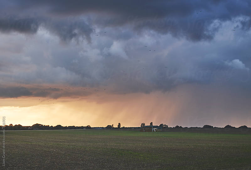 Dark stormy sky over a barn at sunset. Norfolk, UK. by Liam Grant for Stocksy United
