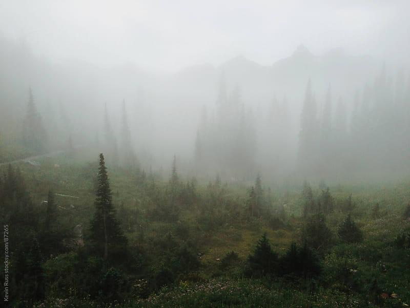Foggy Washington Landscape by Kevin Russ for Stocksy United