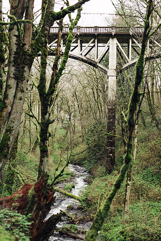 Mossy bridge by Sara K Byrne Photography for Stocksy United