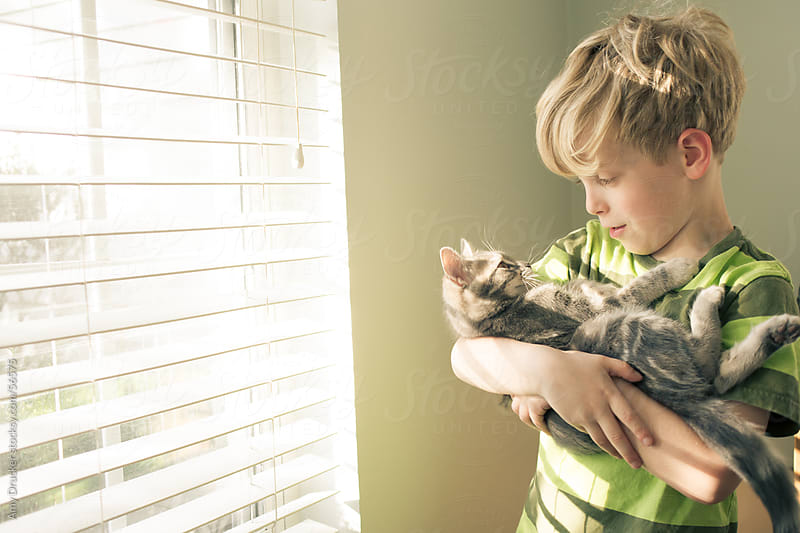 Young Boy and Grey Kitten by Amy Drucker for Stocksy United