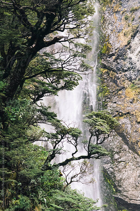 View up to the waterfall, Devil's Punchbowl, Arthur's Pass National Park, New Zealand. by Thomas Pickard Photography Ltd. for Stocksy United