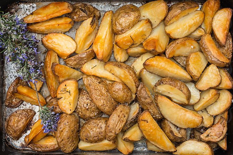 roast potato wedges in a roasting pan by Gillian Vann for Stocksy United