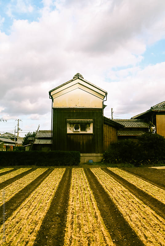 Small urban farm in Kyoto by Erik Naumann for Stocksy United