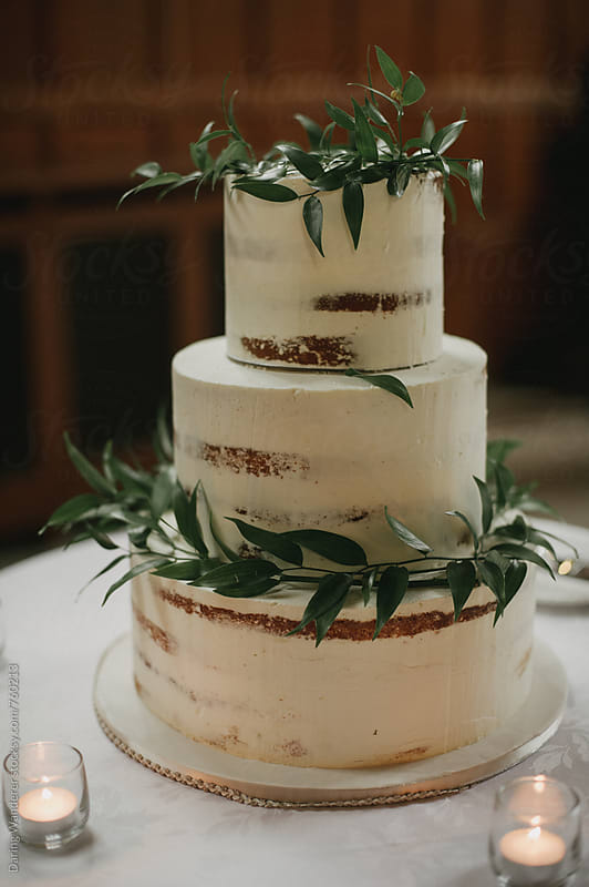 Vanilla icing on simple tiered cake with vine decor by Daring Wanderer for Stocksy United