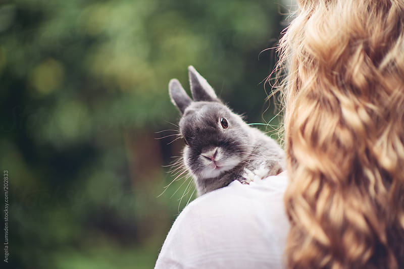 Teenage girl with a small grey rabbit by Angela Lumsden for Stocksy United