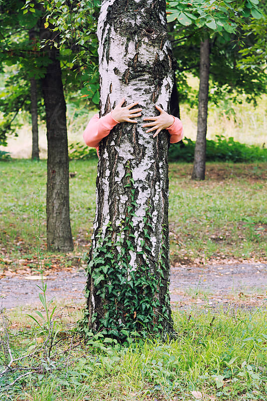 Person hugging a tree by Pixel Stories for Stocksy United