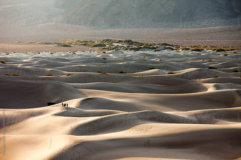 Mesquite Dunes, Death Valley, CA by Thomas Hawk for Stocksy United