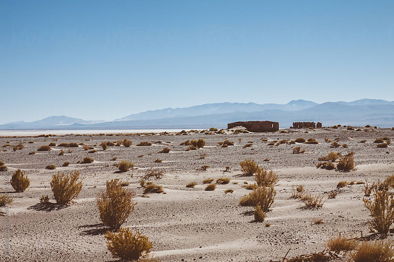 Desert landscape, northern Argentina by michela ravasio for Stocksy United