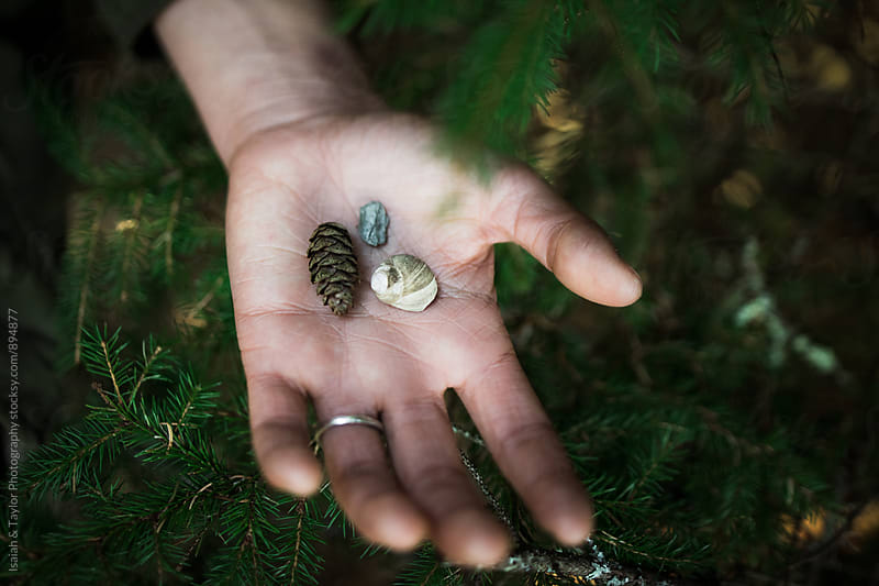 Hand holding nature by Isaiah & Taylor Photography for Stocksy United