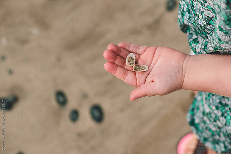 Finding sea shells by Courtney Rust for Stocksy United