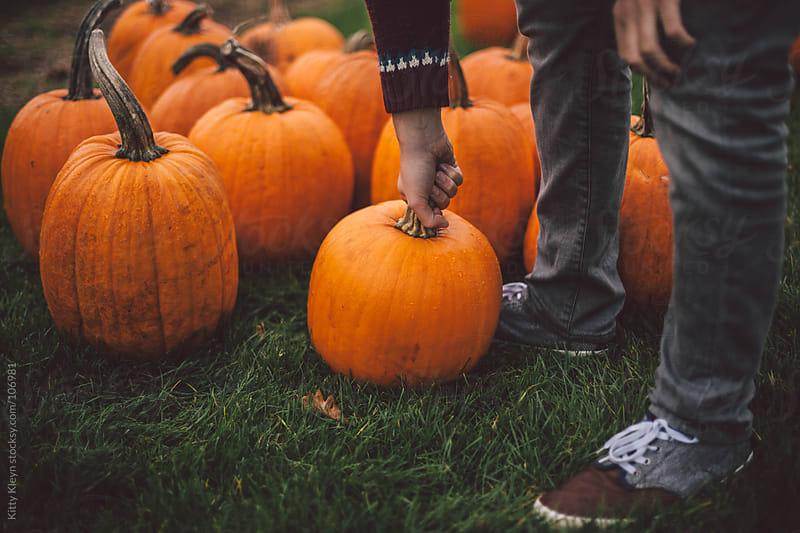 Picking a pumpkin by Kitty Kleyn for Stocksy United