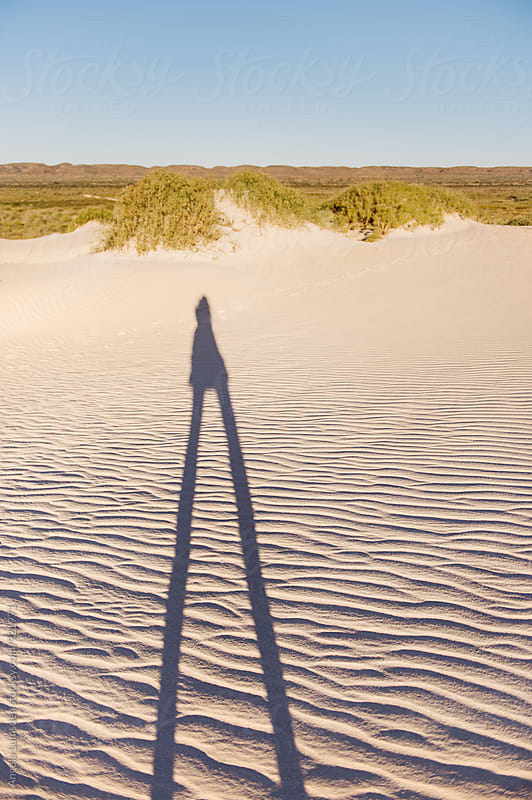 Shadows on wind blown sand dunes in late afternoon sun by Angela Lumsden for Stocksy United