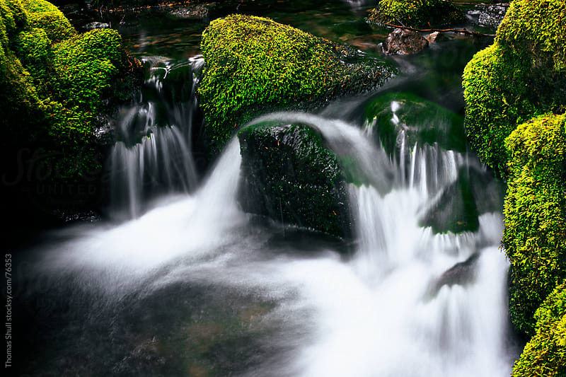 Mossy Rocks with Small Waterfall by Thomas Shull for Stocksy United