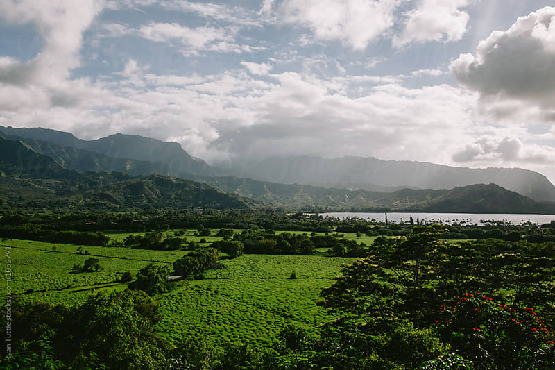 Kauai by Ryan Tuttle for Stocksy United