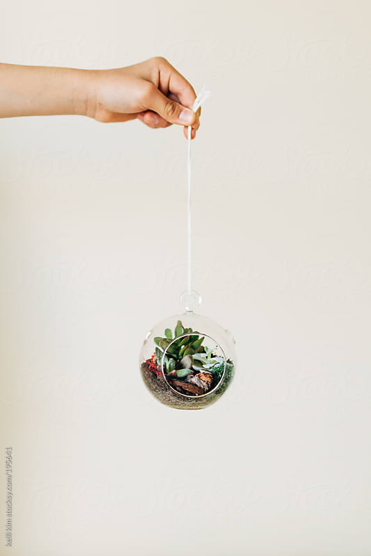 A hand holds a terrarium ornament by twine by kelli kim for Stocksy United